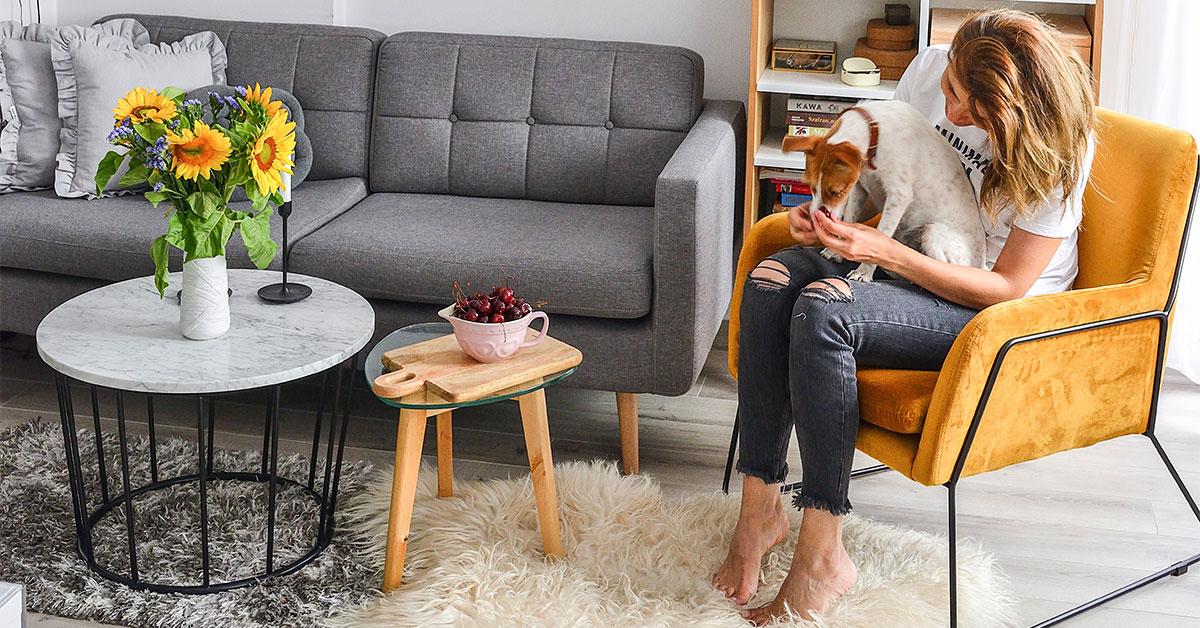 Robuste Sofas und Sessel für Tierbesitzer. Welches Möbelmodell und welcher Bezugsstoff sollen gewählt werden?