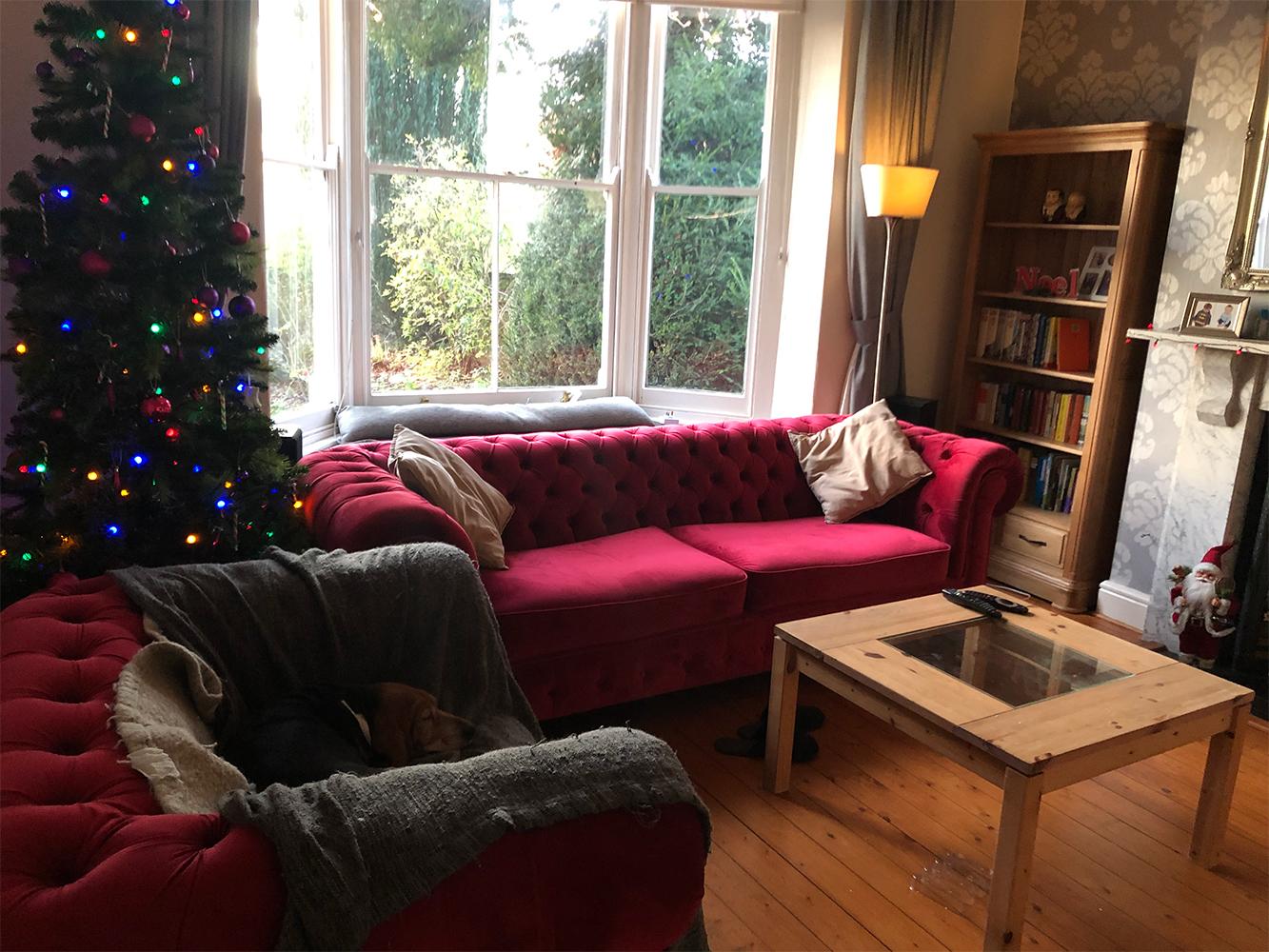 Dunkelrotes Sofa und gepolsterter Sessel Chesterfield Max