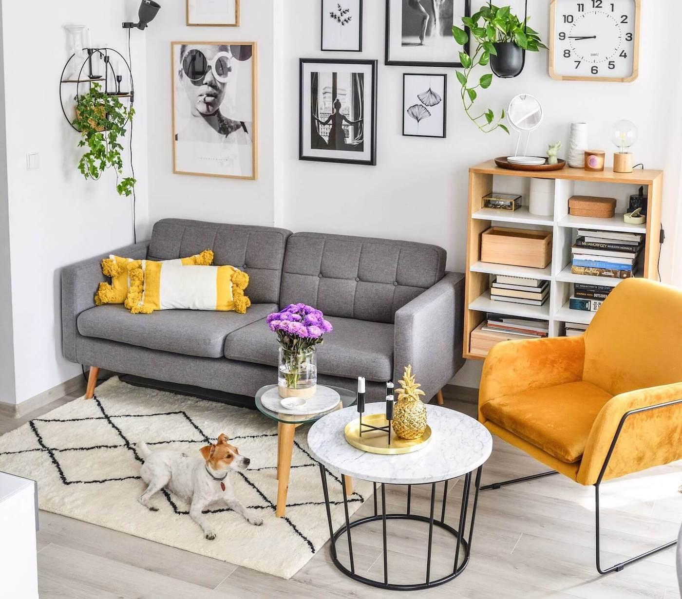 Graues Dreisitzer-Sofa Brest und gelber Velour-Sessel Foxe